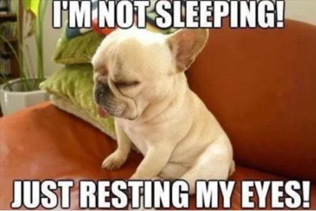 I-Am-Not-Sleeping-Just-Resting-My-Eyes-Funny-Meme-Image1