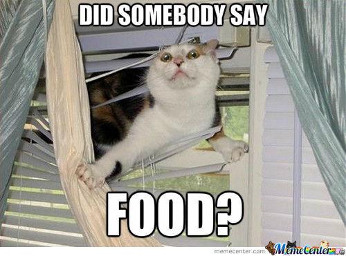 say food